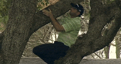 Golfer's Ball Gets Stuck In A Tree, So He Climbs It And Takes A Shot